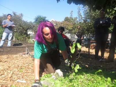 Veronica is chopping compost with a machete.