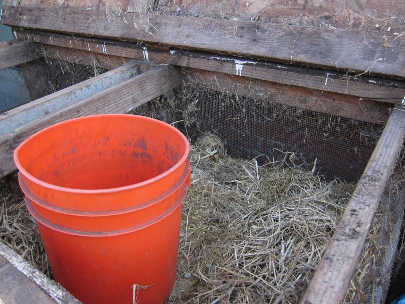 Looking inside, you will see the compost box mixed with water and worms